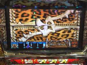 モンスターハンターで豹柄出現の激熱プレミア演出画像