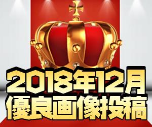 ココ!ぱち 2018年12月優良画像投稿!!