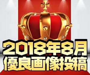 ココ!ぱち 2018年8月優良画像投稿!!