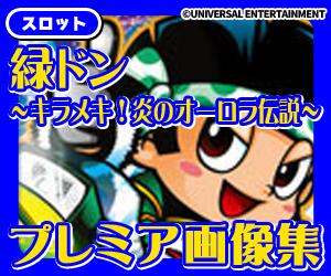 ココ!ぱち ドンちゃんシリーズ!緑ドンキラメキ!ドンちゃんシリーズ!緑ドンキラメキ!炎のオーロラ伝説へ